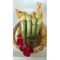 Zucchina Sarzana 1Kg