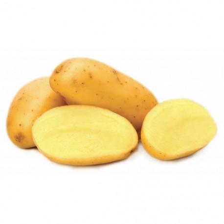 Patata Rossa di Colfiorito Bio IGP 2.5 Kg